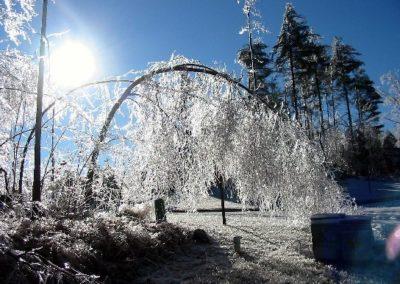 Winter Storm 2005